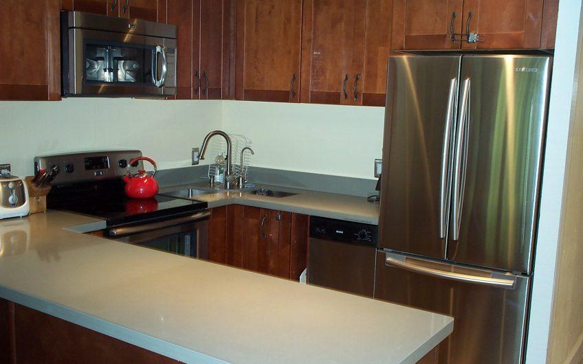 Fully remodeled 2 bedroom Condo! CS3