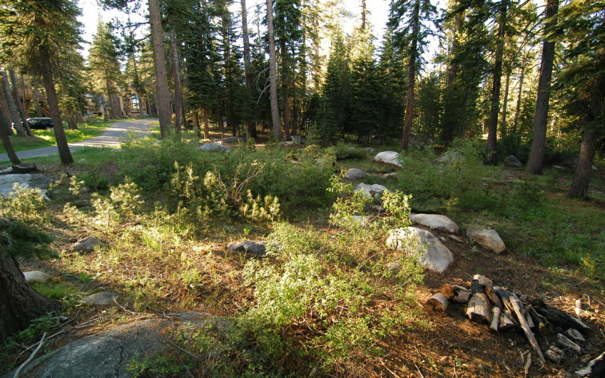 EASY ACCESS & LEVEL LOT READY TO BUILD