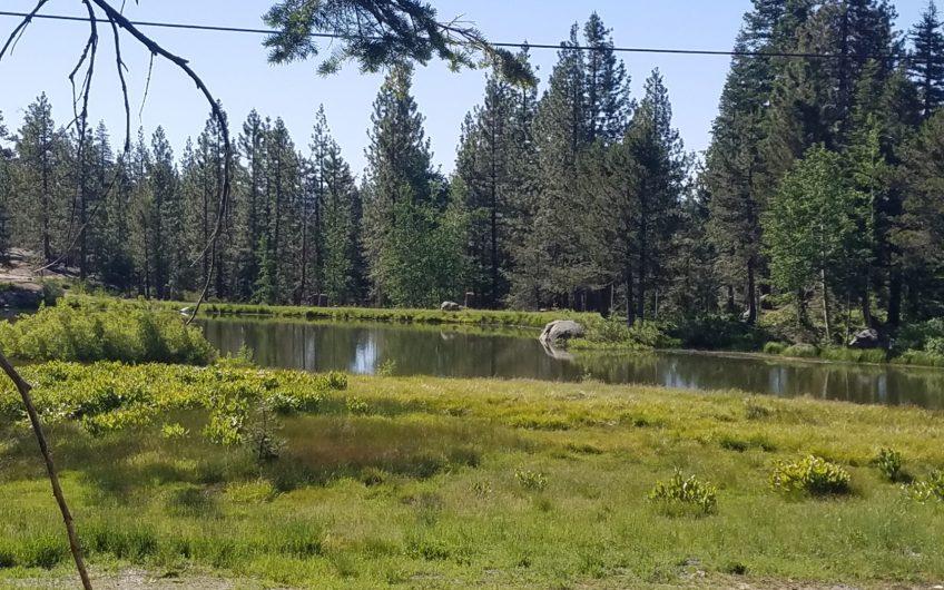 Sky High Pond View