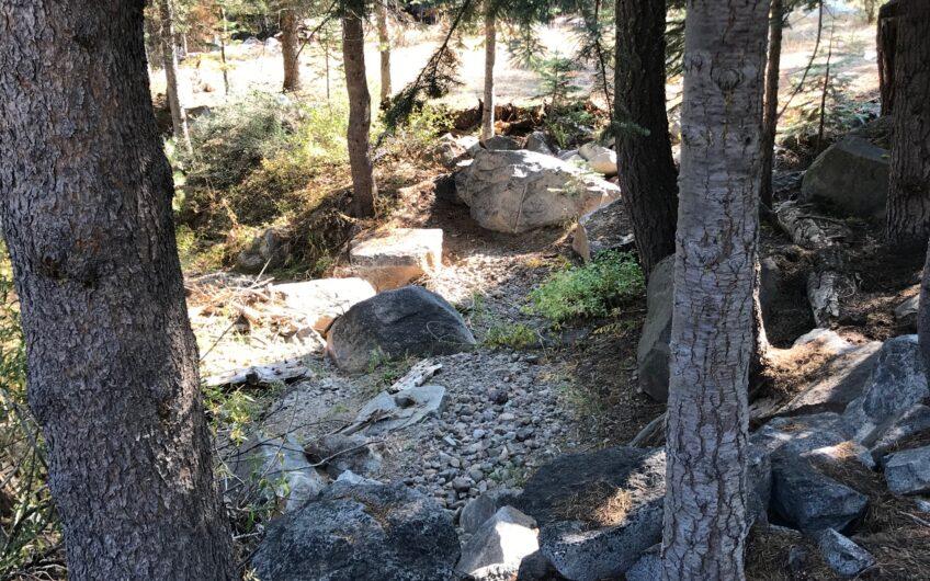 Corner to Cul de Sac with Seasonal Stream