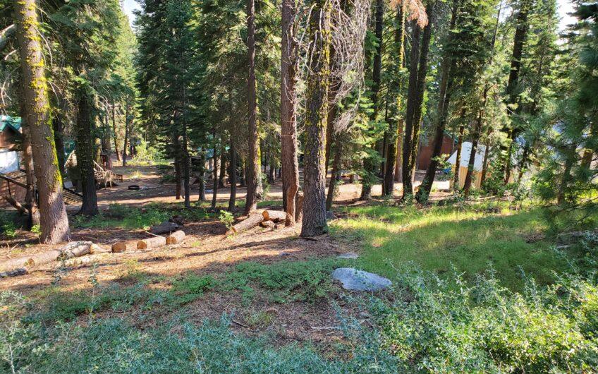 Corner Lot in Sky High Ranch