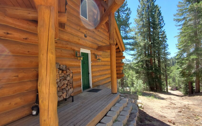 Custom Bear Valley Log Home